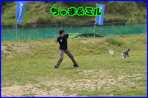 DSC_3549_20140507211540c23.jpg