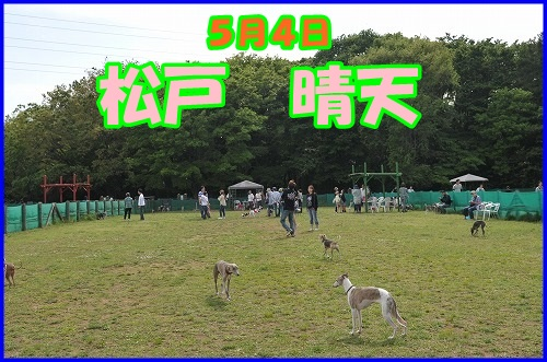 DSC_3600_201405122202282a7.jpg