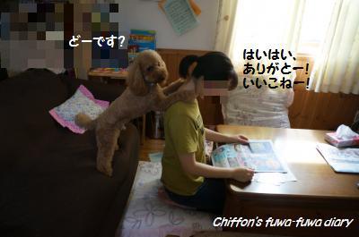 DSC03427_convert_20140629210203.jpg