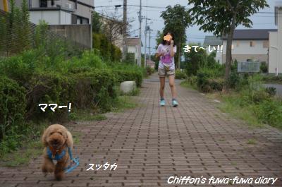 DSC03967_convert_20140828181705.jpg