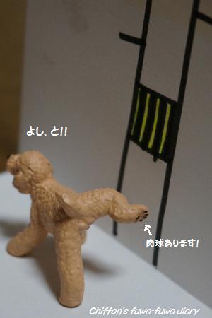 DSC03980_convert_20140831160717.jpg
