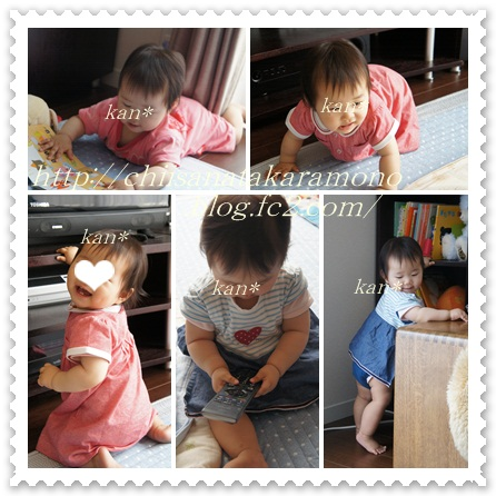 cats9_20140703011339fa6.jpg