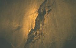 ある地下室の避けた壁