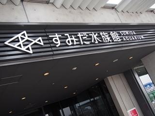 2014_06090275.jpg