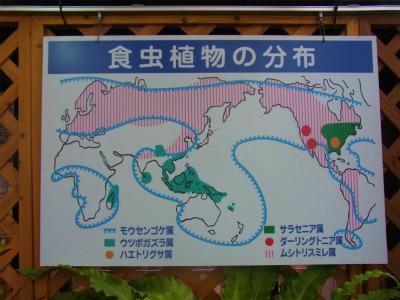syukusyo-RIMG0145.jpg