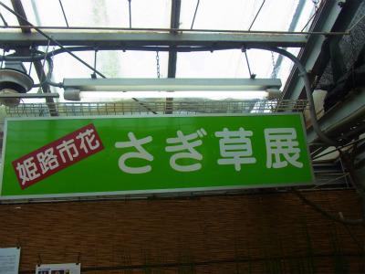 syukusyo-RIMG0146_20140814163324d0c.jpg