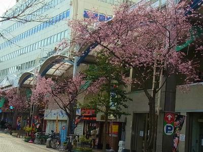 syukusyo-RIMG0645.jpg