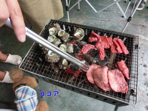 サザエやお肉のバーベキュー