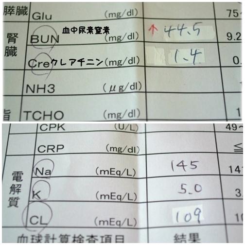 血検H2607 (2)