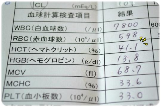 血検H2607 (5)