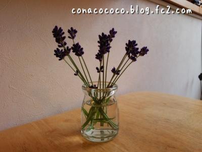lavender moji