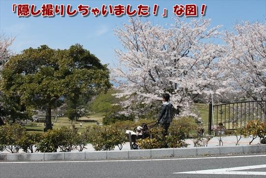 IMG_3943_R.jpg