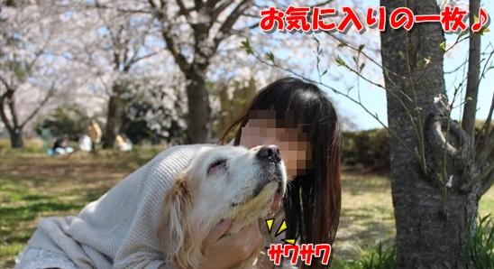 IMG_3947_R.jpg
