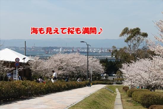 IMG_3957_R.jpg