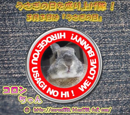 20140221003115fc6.jpg