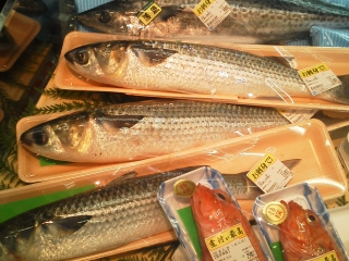 bora_supermarket.jpg