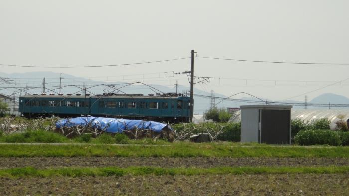 DSC06705 (29)