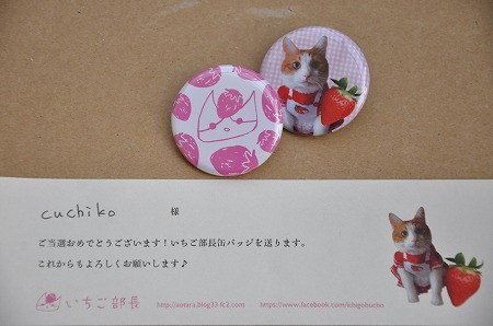DSC_0078da.jpg