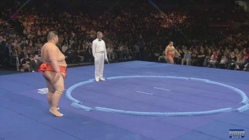 World相撲Challengeの土俵