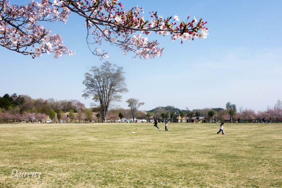 高崎市観音山ファミリーパーク