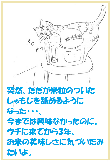2014031501.png