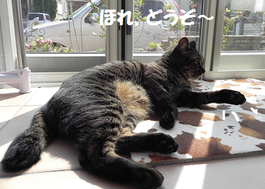 2014031902.png
