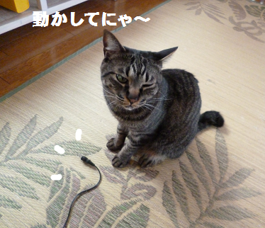 2014052206.png