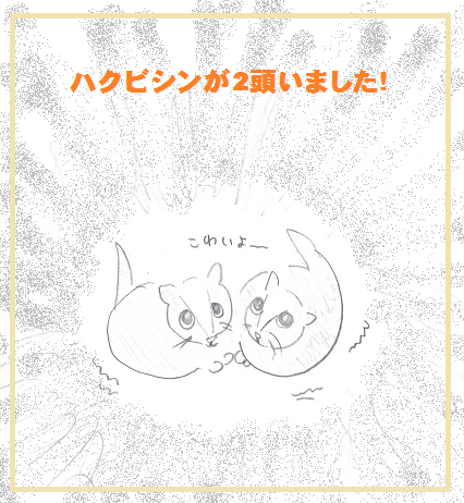 2014060309.png