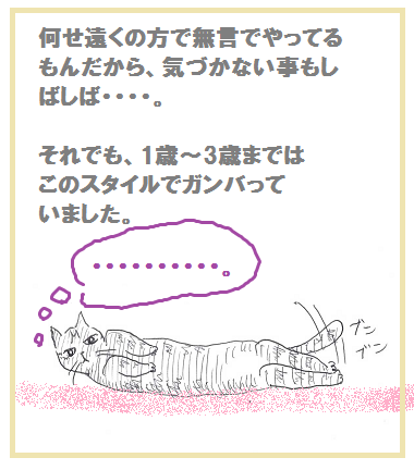 2014062903.png