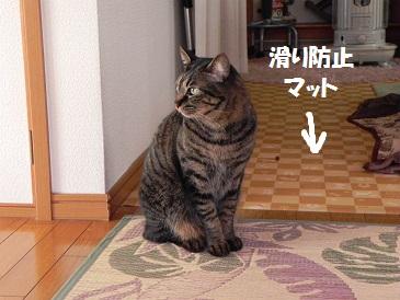 DSCN04201046.jpg