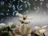 冬を越えて…我が家のグリーン達#2(2014/03/24)
