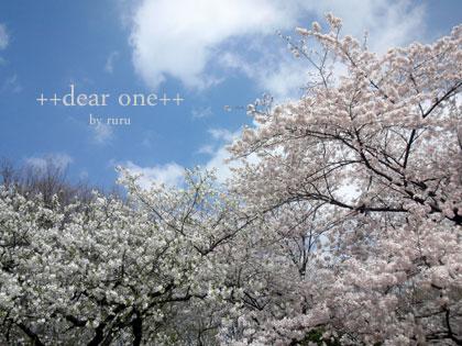 桜140409_2