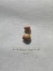 シルクジャスミンの種140716_4