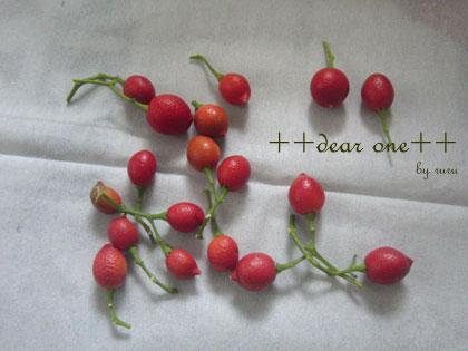 シルクジャスミンの種140716_9