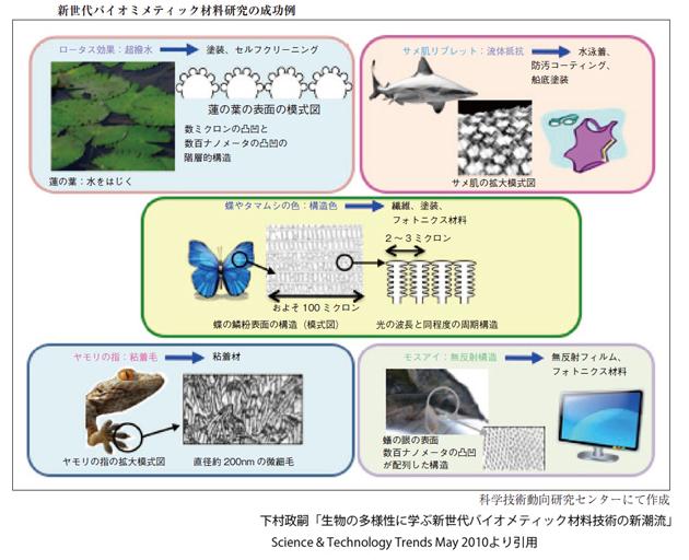 biomimetics_kahaku_image.jpg