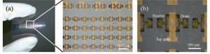 nims_okayama-u_PE_TFT-transistor_image0.jpg