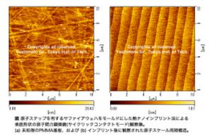 titech_yoshimoto_nanoinprint_PMMA_image.png