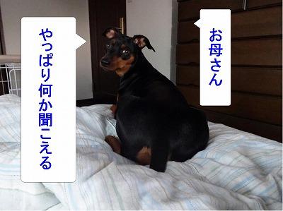 s-雷2014072306