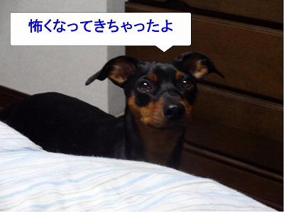 s-雷2014072307