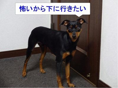 s-雷2014072309
