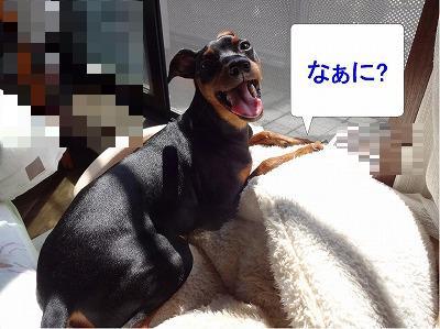 s-休朝2014年9月13