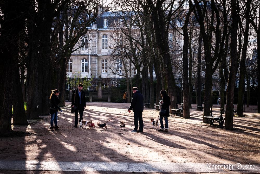 2014 Paris05-4001