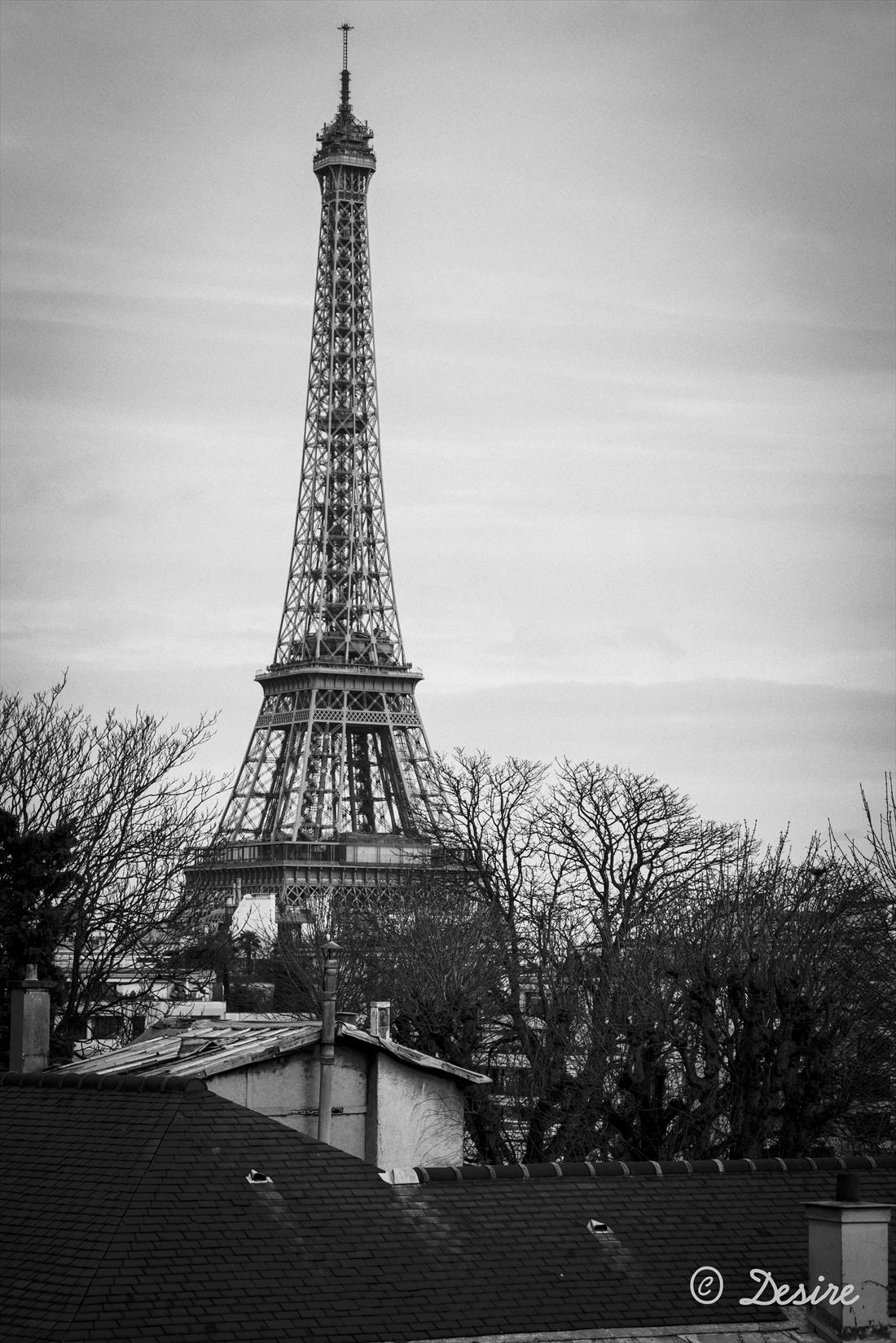 2014 Paris06-3012