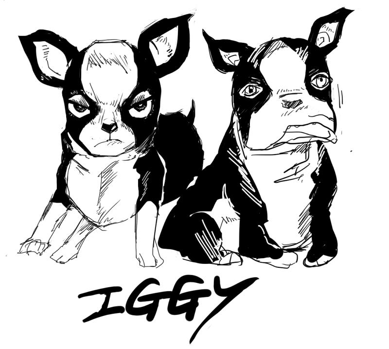 iggy.png