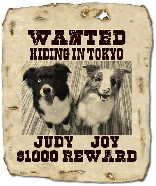 WANTED2014AUG.jpg