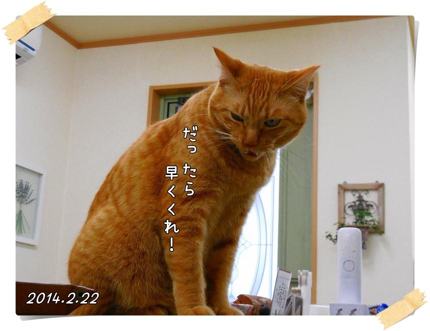 DSCN2163_201404131325430bb.jpg