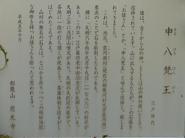 P1090367.jpg
