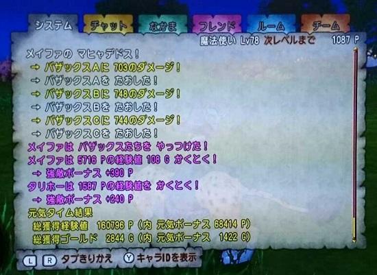 bazax2.jpg