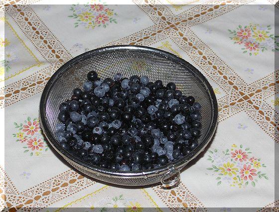 ブルーベリー最後の収穫