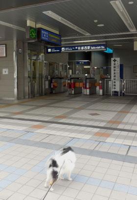 DSCN2787.jpg